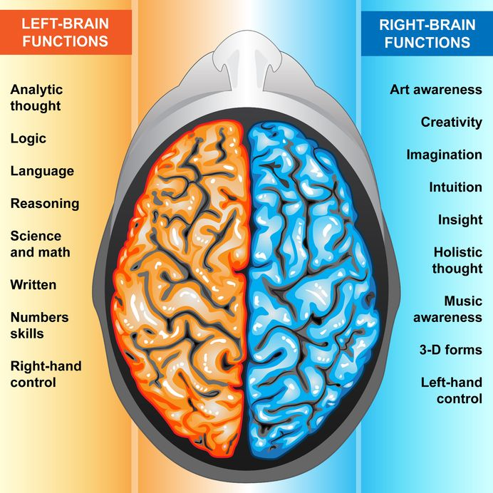 the psychology behind the left and right brain Balancing left and right brain thinking modern neuroscience shows that the concept of right brain and left the pop psychology notion of a left brain and a.